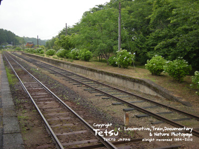 20100609月崎01