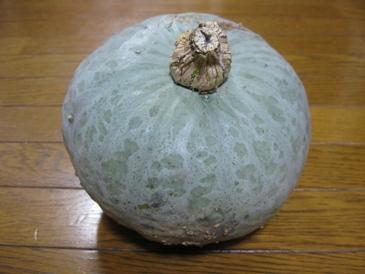 201010かぼちゃ