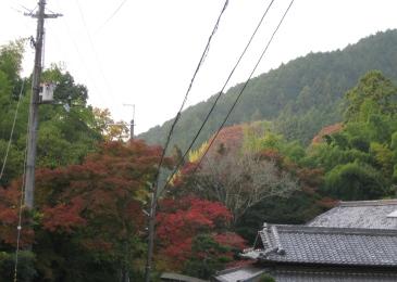 2010延命寺4