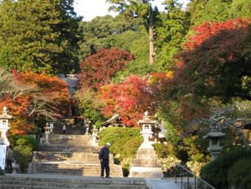 2010観心寺紅葉