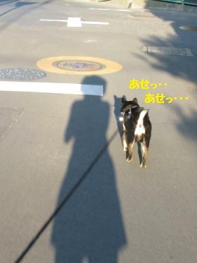 001_convert_20110629101928.jpg