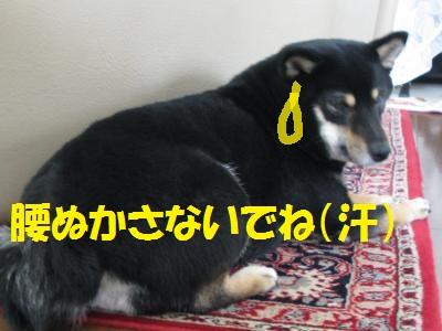 003_convert_20110829191812.jpg