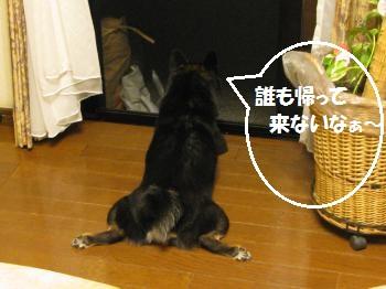 004_convert_20110620132919.jpg
