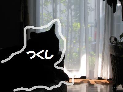 033_convert_20110910114123_20110910132458.jpg