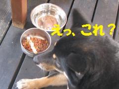 046_convert_20110920161622.jpg
