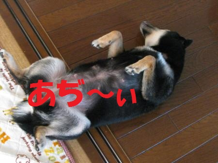 049_convert_20110606195012.jpg