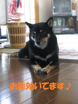 069_convert_20110901133437_20110901140340.jpg