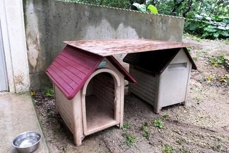 犬小屋にベニヤ板