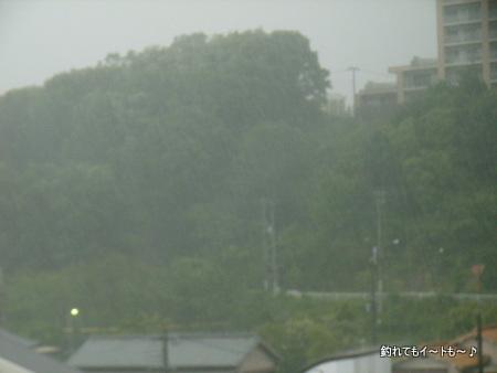 ゲリラ豪雨②