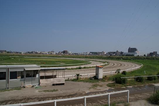 川崎競馬練習馬場