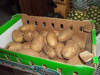 potatotg.jpg