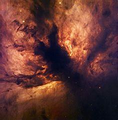 236px-Flame_Nebula_NGC_2024.jpg