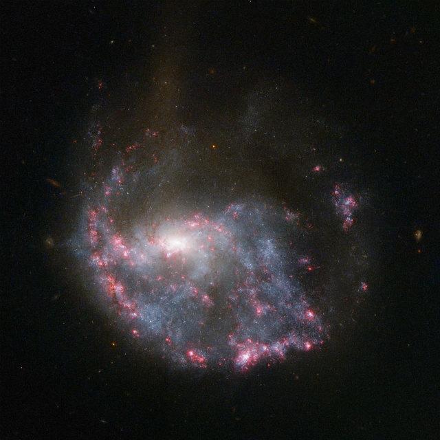 galaxy-NGC-922.jpg