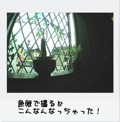 PICT0179.jpg