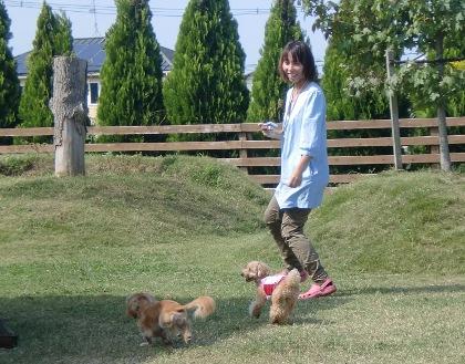 CIMG8033_20101013172513.jpg