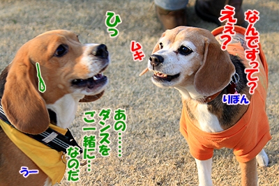 10_20110112214401.jpg