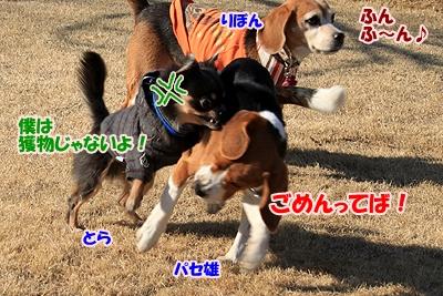 10_20110112231129.jpg
