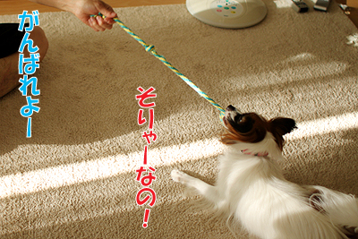 1_20100830123920.jpg
