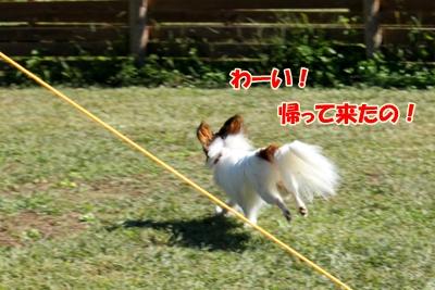 1_20101021100001.jpg
