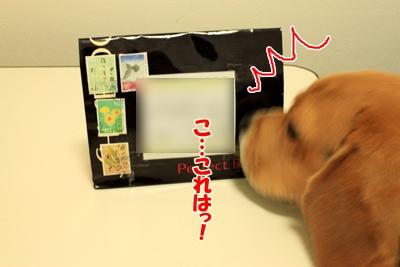 1_20101027004139.jpg