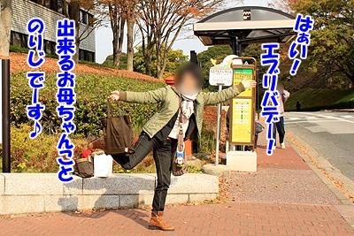 1_20101125230356.jpg