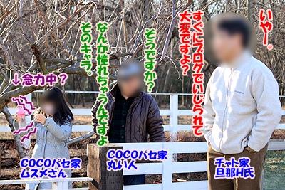 1_20110114220746.jpg