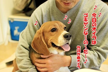 1_20110118194246.jpg
