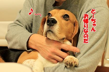 1_20110205224430.jpg