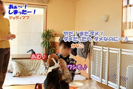 1_20110217220433.jpg