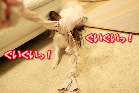 1_20110304130008.jpg