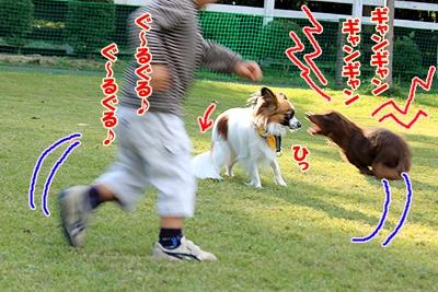 2_20101104205843.jpg
