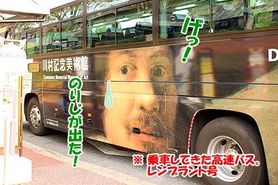 2_20101125230342.jpg