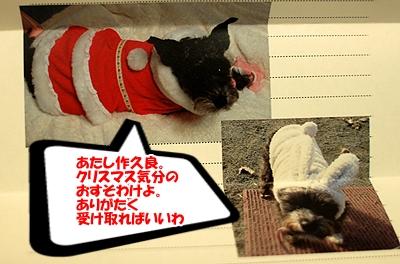 2_20101225025255.jpg