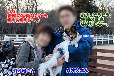 2_20110114220745.jpg
