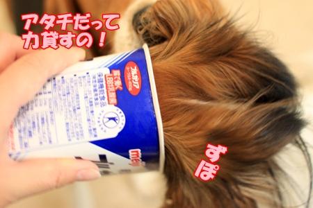 2_20110225191227.jpg