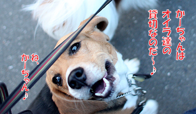 3_20100828175049.jpg