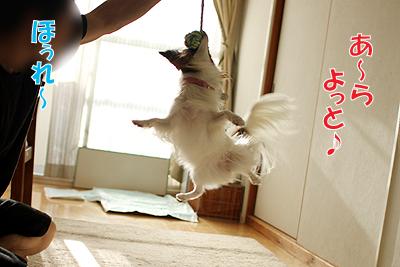 3_20100830123920.jpg