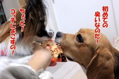 3_20101027004133.jpg