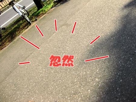 3_20110207210454.jpg