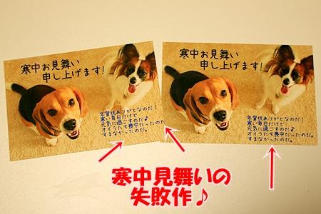 4_20110119210650.jpg