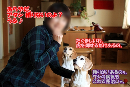 4_20110217220428.jpg