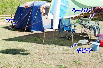 5_20101016214719.jpg