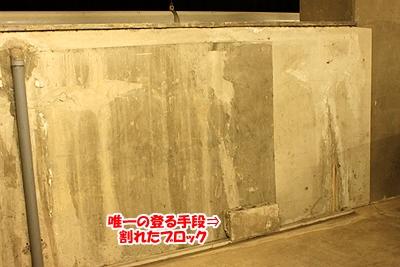 5_20101130184745.jpg
