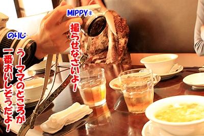 5_20101203202525.jpg
