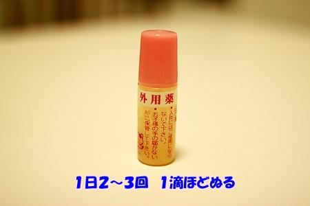 5_20110121215435.jpg