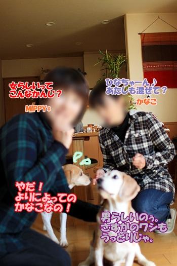 5_20110217220406.jpg