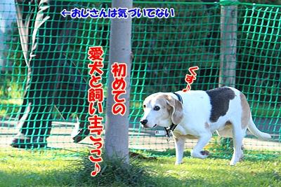 6_20101104013829.jpg