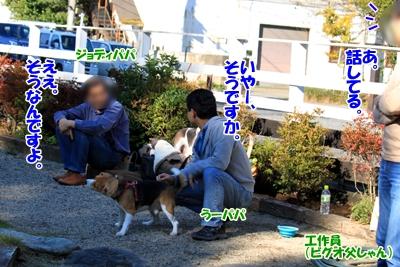 6_20101107230422.jpg