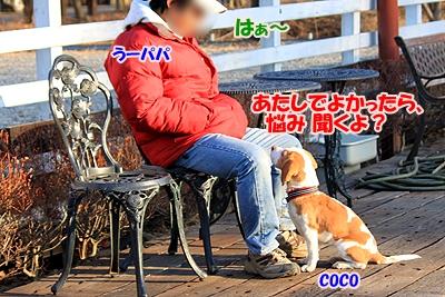 6_20110112231157.jpg