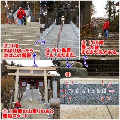 6_20110131224813.jpg